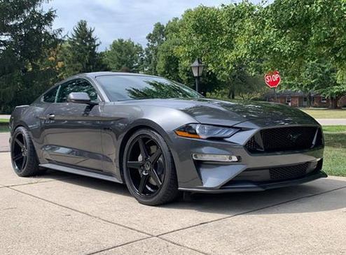 Bučni Mustang