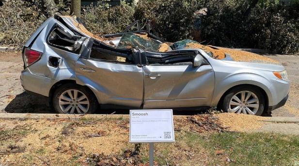 Subaru i stablo